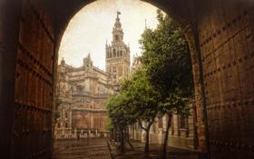Обои город, арка, здания, ворота, башня, улица, дерево