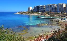 Обои Мальта, Malta, набережная, дома, пальмы., море