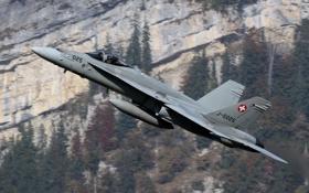 Картинка полет, истребитель, пилот, многоцелевой, Hornet, FA-18