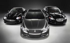 Картинка mixed, машины, ягуар, jaguar, красивые, дорогие