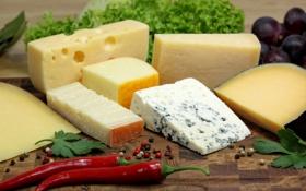 Обои сыр, перец, специи, ассорти