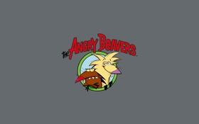 Обои обои, мультфильм, сша, wallpapers, Крутые Бобры, Angry Beavers