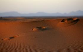 Обои следы, widescreen wallpapers, фото, холмы, песок, пески, пустыня