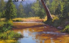 Обои рисунок, арт, artsaus, coxs river