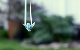 Обои птенец, bird, сад, веревки, полет, toy, игрушка