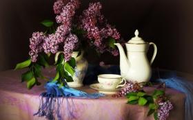 Обои цветы, фото, чашка, ваза, кувшин, натюрморт, сирень