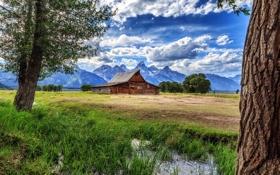 Картинка горы, пейзаж, поле, дом, дерево