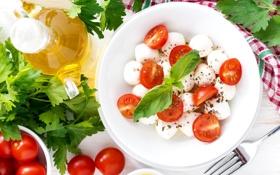 Обои помидоры, петрушка, салат, базилик, моцарелла