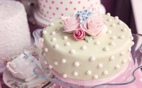 Обои праздник, розы, торт, крем
