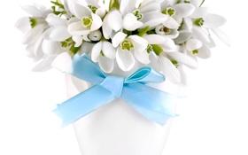 Картинка букет, подснежники, white, flowers, spring, delicate, snowdrops