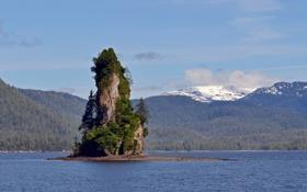 Обои деревья, скала, озеро, холмы, островок, хвойные