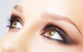 Обои глаза, взгляд, девушка, макро, ресницы, фон, карие