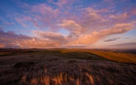 Картинка зелень, небо, трава, облака, пейзаж, закат, природа
