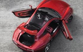 Обои багажник, двери, Alfa Romeo, Touring, открытые, Disco Volante