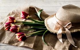 Обои цветы, шляпа, лента, тюльпаны