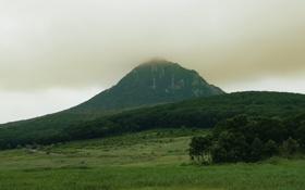 Обои пейзаж, гора, полесье