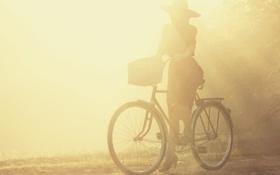 Обои асфальт, девушка, солнце, велосипед, фон, земля, обои