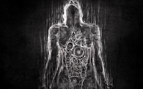 Обои организм, текстура, черный, белый, человек