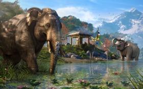 Обои горы, озеро, слоны, Far Cry 4