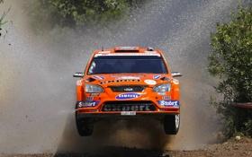 Обои Ford, Rally, передок, WRC, Оранжевый, Focus, ралли