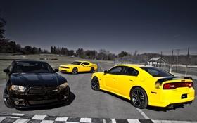 Обои желтый, чёрный, мускул кар, додж, dodge, challenger, charger