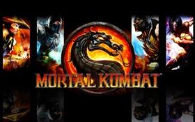 Обои Scorpion, dragon, Sub Zero, Mortal Kombat 9