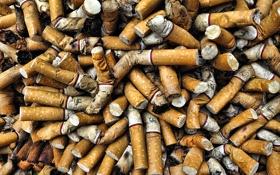 Обои фон, сигареты, окурки
