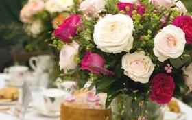 Обои цветы, розы, букет