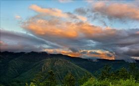 Обои США, облака, закат, Washington, Mount St. Helens, лес, горы