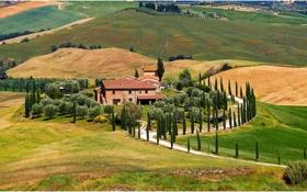 Картинка осень, Сиена, холмы, Ашано, дом, деревья, дорога
