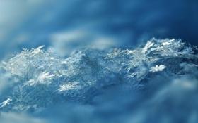 Обои макро, снег, снежинки
