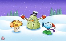 Обои зима, снег, гриб, Plants vs Zombies
