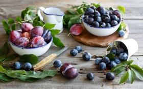 Обои листья, еда, тарелки, посуда, фрукты, сливы