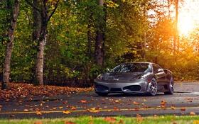 Обои Ferrari, Green, Sun, Autumn, Tuning, asphalt, Silver
