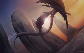 Обои полет, скалы, дракон, арт, хвост, cloudminedesign