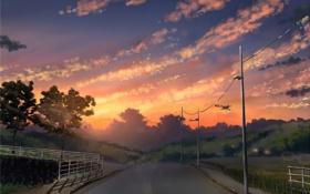 Обои дорога, небо, природа, фото, столбы, забор, картина