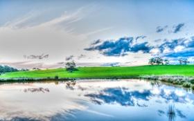 Обои облака, трава, деревья, небо, отражение, озеро