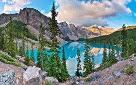 Обои пейзаж, Морейн, горы, канада, вода, озеро, ели