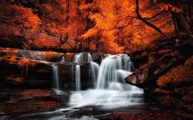 Картинка лес, камни, листва, водопад, Осень