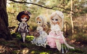 Картинка природа, девочки, игрушки, куклы, трио