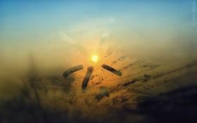 Обои лучи, свет, Солнце, окно, солнышко, запотевшее