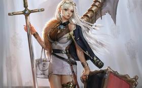 Картинка девушка, меч, щит, шторы