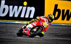 Картинка Фото, Скорость, Гонка, Мотоцикл, Трасса, Ducati, MotoGP