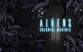 Картинка чужие, aliens, sega games, ALIENS COLONIAL MARINES, ксеноморфы