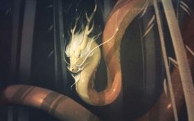 Обои лес, art, dragon, chinese dragon