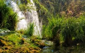 Картинка трава, водопад, мох, солнечно, кусты, Хорватия, Plitvice National Park