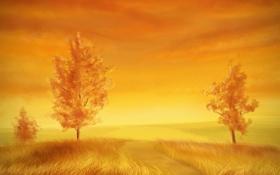 Обои желтый, трава, деревья, природа, арт, осень