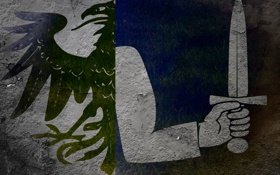 Обои меч, Флаг, Ирландия, герб, ворон, Коннахт