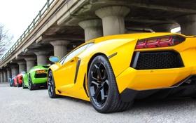 Обои green, Lamborghini, red, yellow, blue, LP700-4, Aventador