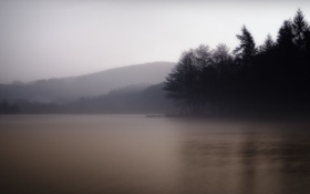 Картинка лес, деревья, природа, туман, озеро, холмы, утро
